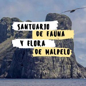 SANTUARIO DE FAUNA Y FLORA DE MALPELO